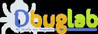 A great web designer: Dbug Lab Pvt Ltd, Chandigarh, India