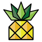 A great web designer: Pineapple Web, Taipei, Taiwan