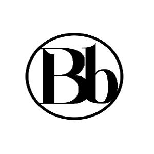 A great web designer: Blissbranding, Allentown, PA