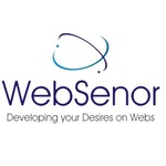 A great web designer: Website Design, Udaipur, India