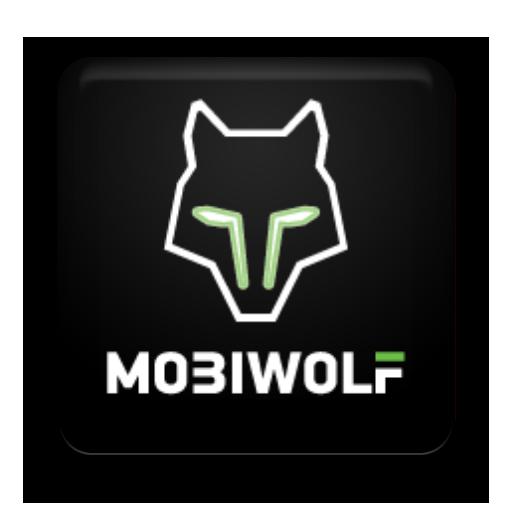 A great web designer: Mobiwolf, Kyiv, Ukraine