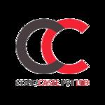 A great web designer: Code Caste Pvt.Ltd., Ahmadabad, India
