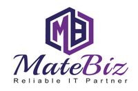 A great web designer: Matebiz, Delhi, India