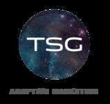 A great web designer: TSG, Washington DC, DC logo