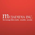 A great web designer: Mujadidia Inc, Texas, TX