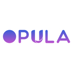A great web designer: Opula Software Development Pvt. Ltd., Surat, India