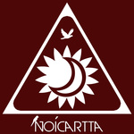 A great web designer: Noicartta, Houston, TX