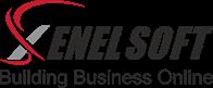 A great web designer: XenelSoft Technologies Pvt. Ltd. , Delhi, India