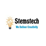 A great web designer: Stemstech.net Website Designing Company Meerut, Meerut, India