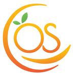A great web designer: OrangeSkill Technologies, Delhi, India