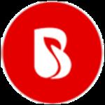 A great web designer: BrainMobi, Noida, India