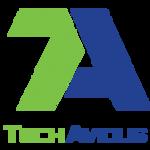 A great web designer: TechAvidus, Gandhinagar, India