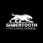A great web designer: Sabertooth Technologies, Nagpur, India