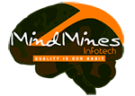 A great web designer: MindMines Infotech, Los Angeles, CA