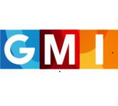 A great web designer: GLOBAL MEDIA INSIGHT, Dubai, India