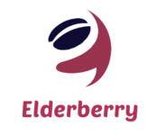A great web designer: Elderberry Tech, Indore, India