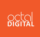 A great web designer: Octal Digital, Hirekerur, India