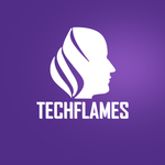 A great web designer: The Techflames, Naperville, IL