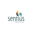 A great web designer: Sentius Strategy, Melbourne, Australia