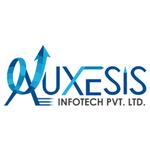 A great web designer: Auxesis Infotech, Houston, TX