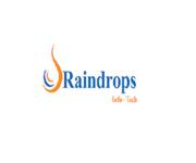 A great web designer: Raindrops Infotech, Garden Grove, CA