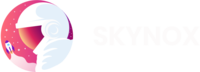 A great web designer: Skynox Tech Pvt Ltd, Chandigarh, India
