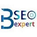A great web designer: bangaloreseoexpert, Bengaluru, India