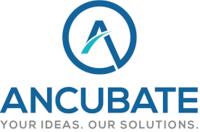 A great web designer: Ancubate Inc, Plainfield, NJ