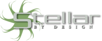 A great web designer: Stellar By Design LLC, Boise, ID logo