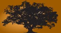 Comal Productions logo