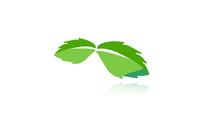 A great web designer: Charles Mint Studios, Tampa, FL logo