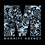 A great web designer: Magnify Agency, Orlando, FL