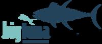 A great web designer: BigTuna Interactive, San Diego, CA logo