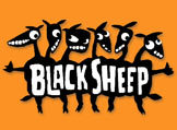 A great web designer: Black Sheep Web Design, Albany, NY