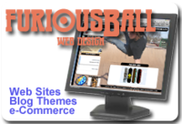 A great web designer: furiousBall Web Design, Philadelphia, PA logo