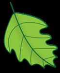 A great web designer: Arbor Web Solutions, Miami, FL logo