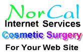 A great web designer: NorCal Internet Services, San Francisco, CA logo