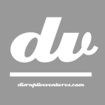 A great web designer: Disruptive Ventures, Inc., Fort Wayne, IN