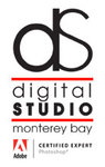 A great web designer: Digital Studio Monterey Bay, Monterey, CA
