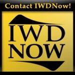 A great web designer: IWDNow Marketing, Detroit, MI logo