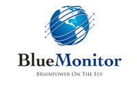A great web designer: Blue Monitor, San Francisco, CA logo
