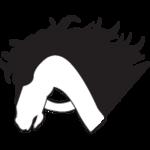 A great web designer: Al-Adham Web Solutions, cairo, Egypt