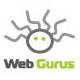A great web designer: WebGurus, Cluj, Romania