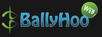 A great web designer: Ballyhoo Web Solutions, Detroit, MI logo