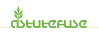 A great web designer: Astutefuse, Washington DC, DC logo