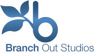 A great web designer: Branch Out Studios, Detroit, MI
