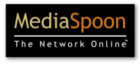A great web designer: Media Spoon, LLC, Boston, MA logo