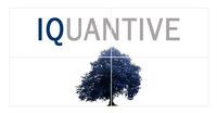 A great web designer: iquantive, Toronto, Canada logo
