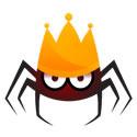 A great web designer: Ben King - Web King Design, Dunedin, New Zealand logo