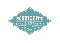 A great web designer: Scenic City Labs, Chattanooga, TN